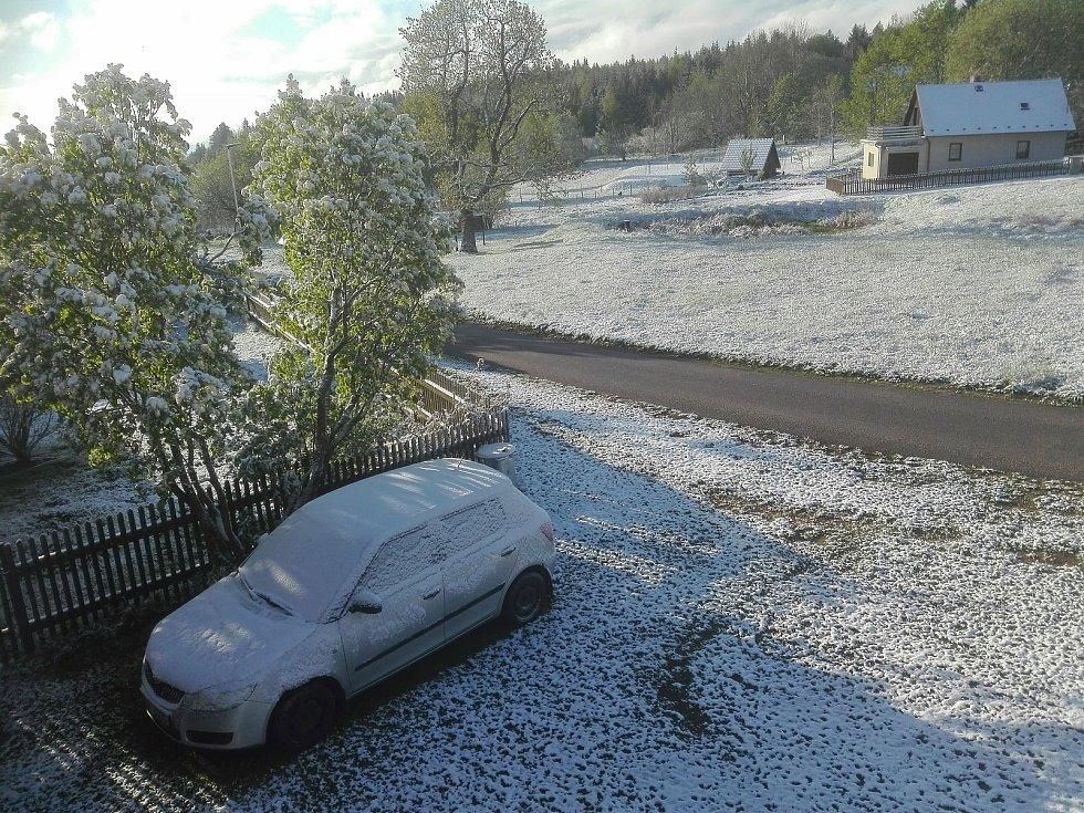 Ledoví muži roku 2020 přinesli na Prachaticko sníh. Pocukrovali krajinu v Korytě.