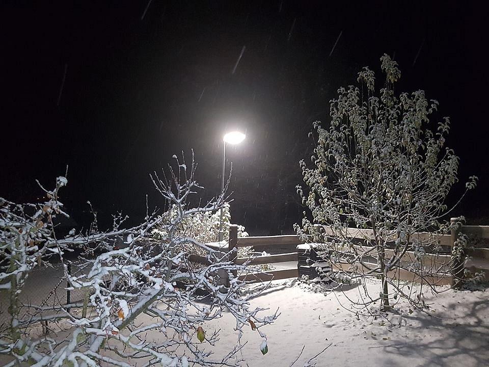 První sníh. Chlumany.