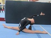 Vimperským gymnastkám se na závodech dařilo.