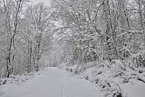 Jen v Českých Žlebech napadlo za poslední dva dny zhruba třicet centimetrů sněhu.