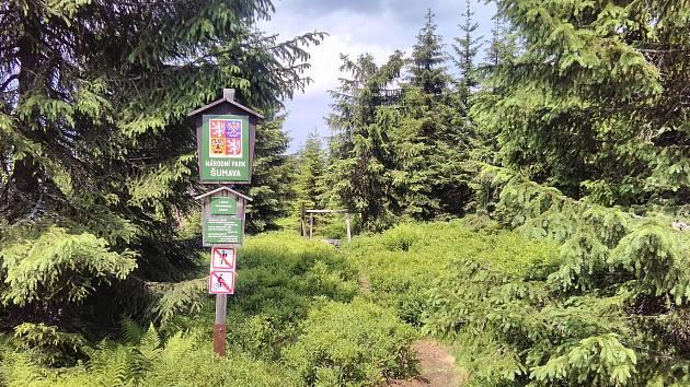 Šumava, historický hraniční přechod Modrý sloup, směr do Luzenského údolí.