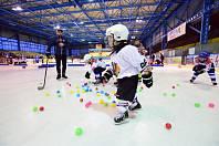 Vimperští se znovu zapojí do akce pojď hrát hokej.