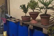 Jímání dešťové vody do sudů zná každý zahrádkář, teď je možná začnou využívat ve větší míře i majitelé rodinných domů.
