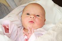 VIKTORIE MAŇHALOVÁ, PRACHATICE. Narodila se v pondělí 16. prosince v 9 hodin a 51 minut v prachatické porodnici. Vážila 3500 gramů a měřila 52 cm. Rodiče: Pavla Bohačová a Martin Maňhal.