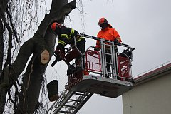 Prachatičtí profesionální hasiči v pátek dopoledne káceli strom u bývalé polikliniky.
