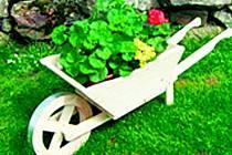 Domov matky Vojtěchy chce vylepšit svou zahradu.