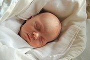 Milan LAPKA, Tvrzice. Narodil se v pátek 2. listopadu v 10 hodin a 25 minut v prachatické porodnici. Vážil 3650 gramů. Rodiče: Jitka a Milan Lapkovi.