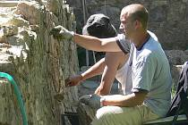 Podle architekta Nepustila by mělo být historické opevnění památkářskou prioritou. V areálu hospice je jeho část právě restaurována.