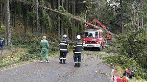 Větrem vyvrácený strom poškodil hasičům zásahové vozidlo
