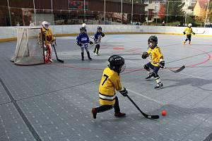 Prachatická Highlanders aréna hostila turnaj mladších a starších přípravek z jihu Čech.