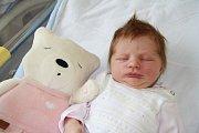VANESA PŮBALOVÁ, VLACHOVO BŘEZÍ. Narodila se v úterý 14. května v 8 hodin a 48 minut v prachatické porodnici. Vážila 3410 gramů. Má téměř tříletého brášku Daniela. Rodiče: Tereza a Ondřej Půbalovi.