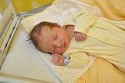 Rodina Volných ze Stachů má od středy 14. února prvorozeného syna. Chlapeček Jan Volný se narodil ve strakonické porodnici v 19 hodin a 49 minut. Vážil 3730 gramů.
