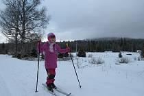 Do lyžařských stop nevyráží jen zkušení lyžaři, ale i také úplní začátečníci. Snímek byl dnes pořízený na Stožeckých loukách.