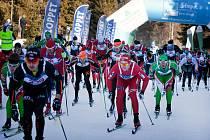 Na lyžích zasněženou Šumavou je nádherný pocit nejen pro lyžařskou špičku, ale všechny vyznavaček úzkých prkýnek ve stopě.
