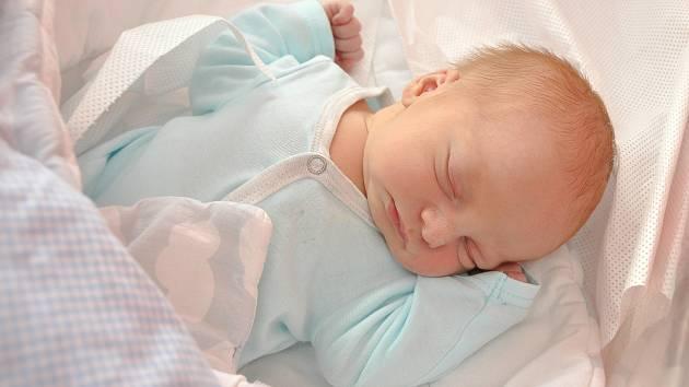 Martin Hejlek se narodil 15. července v 0:31 hodin ve strakonické nemocnici s váhou 3200 gramů. Rodiče Anna a Martin pocházejí z Volyně – Zechovice.