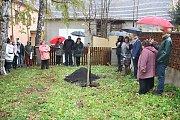 Prachatičtí senioři vysadili u Štěpánčina parku lípu Svobody.