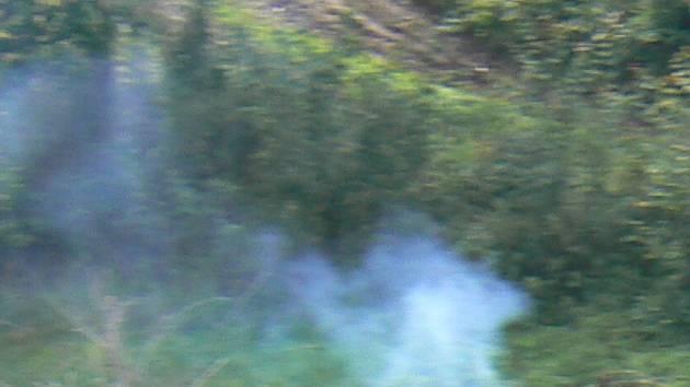 Netoličtí dobrovolní hasiči vyjížděli ke střeše, ze které se kouřilo. Ilustrační foto.