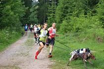 Libínský caniscross se blíží. Běžci a psi vyběhnou v sobotu.