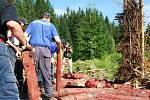 Více než sedm hodin potřebovali v sobotu hasiči z Nové Pece, než z přibližně čtrnácti metrů dřeva postavili přímo pohádkový milíř.