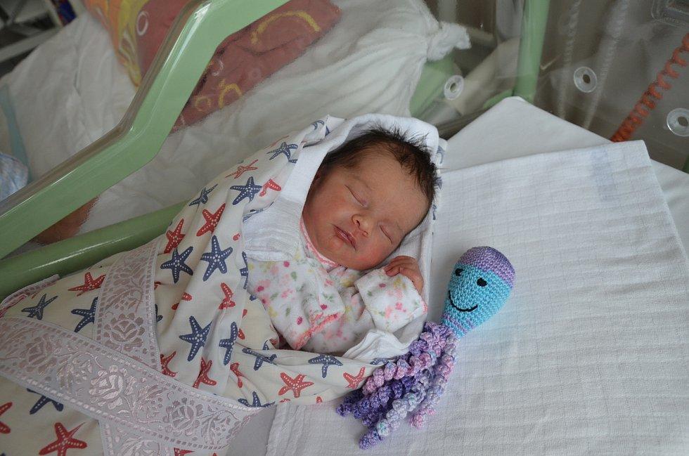 KATEŘINA KAŠOVÁ, PÍSEK.Narodila se v pátek 16. srpna ve 13 hodin a 50 minut v písecké porodnici. Vážila 2700 gramů a měřila 47 centimetrů. Má sestřičku Kláru (4 roky). Rodiče: Dominika Bromová a Miroslav Kaše.