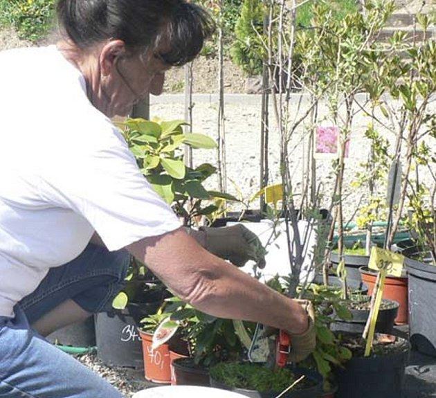 Budoucí zahradníci se učí praci v Prachaticích