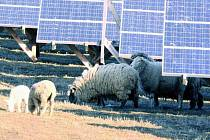 ROZHODNOU PENÍZE. O osudu pozemku v Jámě rozhodnou finanční prostředky. MIčovičtí by zde ale rádi viděli novou elektrárnu, jako mají například v Bušanovicích. Ilustrační foto.