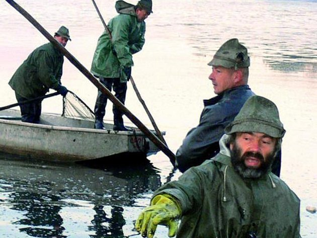 VÝLOV. V sobotu rybáři začnou výlovem rybníka Krazák. O týden později pak začne výlov rybníka Dubský v obci Dub. Ilustrační foto.