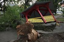 V srpnu 2013 vyvrátila vichřice lípu, která při pádu poničila altán ve Štěpánčině parku. V loňském roce vítr zlomil smrk na jedné z podest vedle parku a před dvěma týdny se v uhnilé části kmene zlomila v parku vysoká bříza.