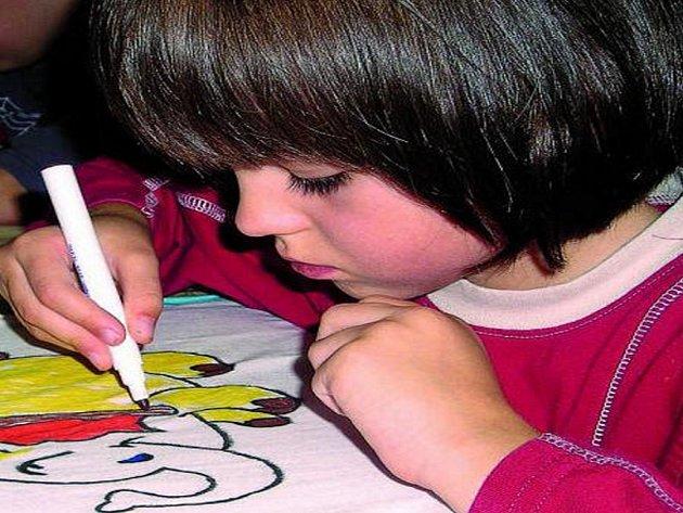 OBRÁZKY NA TRIČKA. Terezka Školová (na snímku) a ostatní děti z Mateřské školy ve Vitějovicích si svými nápady oživily trička.