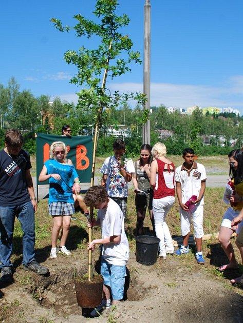 Děti vysadily nové stromy.