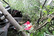 Z místa nehody byl řidič převezen do nemocnice.
