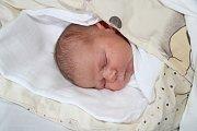 PAVEL BIGAS, PRACHATICE.Narodil se ve středu 2. ledna v 9 hodin a 52 minut v prachatické porodnici, vážil 4090 gramů. Má sestřičku Rozálii (2 roky). Rodiče: Michaela Čužnová a Štefan Bigas.