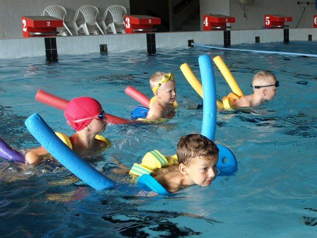 Děti v Prachaticích si mohou o prázdninách vybrat z několika příměstských táborů. Jeden z nich je i v krytém plaveckém bazénu.