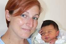 Sára Bezděkovská  se narodila v písecké porodnici v pátek 22. července ve 21.20 hodin. Holčička při narození vážila 3600 gramů a měřila padesát centimetrů. Maminka Eva a tatínek Jiří si dceru odvezli domů, do Vodňan.