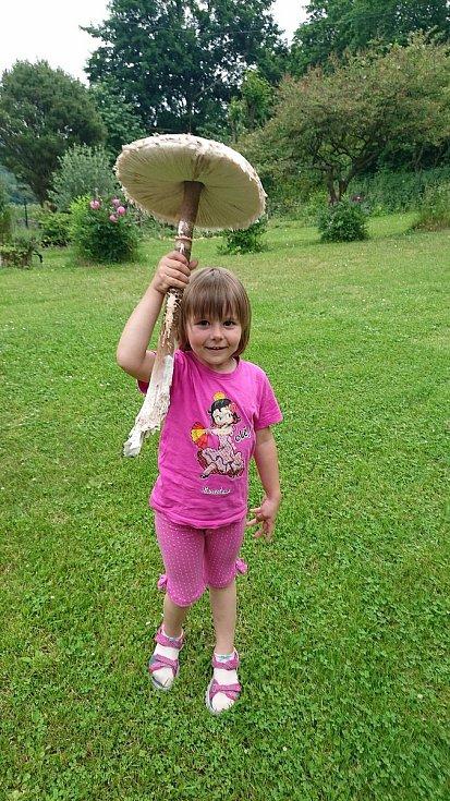 Obrovskou bedlu našla se svou dcerou Emou (3,5 roku) ve středu odpoledne Marcela Slámová z Vodňan. Průměr klobouku měl 31 cm a na výšku měla přes 50 cm.