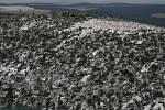 Na Šumavě popadaly při orkánu Kyrill statisíce stromů jen za jedinou noc.