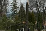 Řádění orkánu nebyla před pěti roky ušetřena ani pietní místa. V Prachaticích byly největší škody na hřbitově.