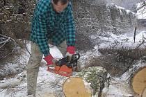 Příprava dřeva do krbu v rodinném domě.