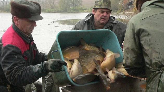 V sobotu se lovil rybník Dubský.