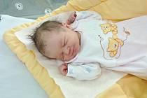 TEREZA LUKEŠOVÁ, MALENICE. Narodila se v úterý 12. února v 10 hodin a 47 minut  ve strakonické porodnici. Vážila 3050 gramů. Rodiče: Jana a Jan.