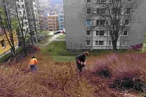 Jarní úklid ve Vimperku.