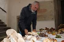 Na sto třicet druhů hub je k vidění na výstavě v Arkádách Staré radnice v Prachaticích.