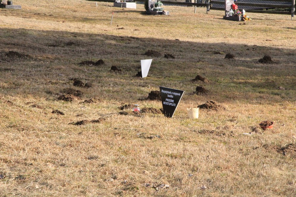 Borovoladský hřbitov v Novém Světě.