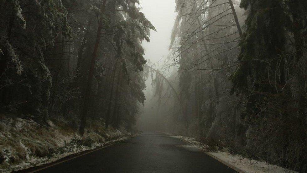 Námraza působila značné problémy v dopravě, na silnicích se tvořila ledovka, průjezd na řadě míst znemožnily popadané a zlomené stromy přes cestu.