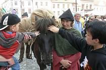 Dětem se koně soumarů velice líbily.