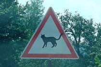 Značka pro kočku