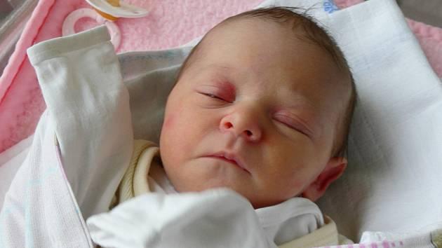 Viktorie Maříková se narodila v písecké porodnici v neděli 29. ledna třináct minut po půlnoci. Při narození vážila 2600 gramů a měřila 47 centimetrů. Holčička bude vyrůstat v Prachaticích.