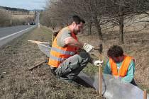 Příprava bezpečného koridoru pro žáby u Šumavských Hoštic.