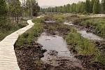 Soumarské rašeliniště, které za sebou revitalizaci už má a obnovuje se.