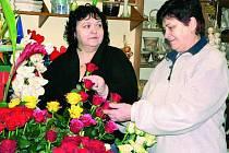 VALENTÝN. Každý rok jdou v prachatickém květinářství na svátek zamilovaných nejvíce na odbyt rudé růže.